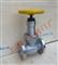 不锈钢液氨截止阀 电厂脱硫专用液氨截止阀