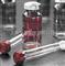 303-45-7-供应99%棉酚分析标准品20mg